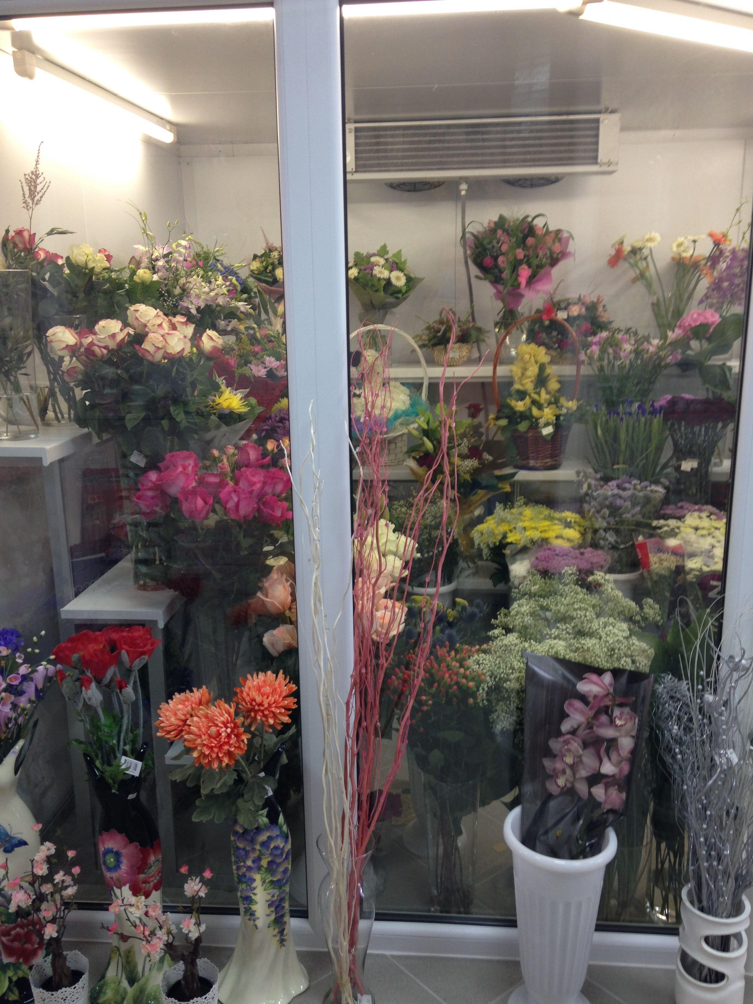 Фото холодильники для цветов